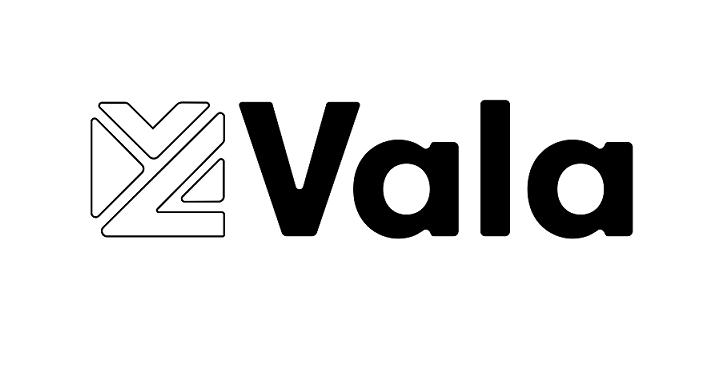 Vala EIS Portfolio Service Image